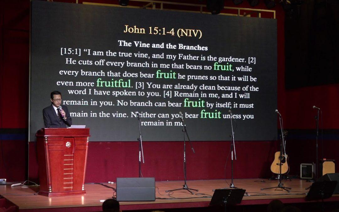 Bear Much Fruit